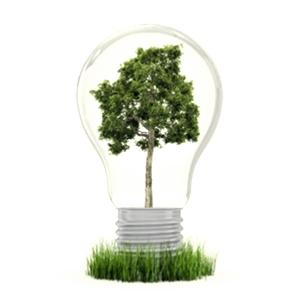 , Опасно!!! Энергосберегающие лампы