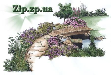 1z-landshaftniy-design